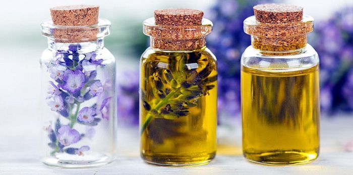 olio essenziale antibiotico